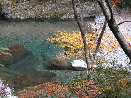 川と紅葉.jpg