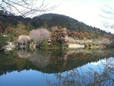 201103-ryouanzi6.jpg